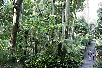 https://en.wikipedia.org/wiki/Royal_Botanic_Gardens,_Melbourne